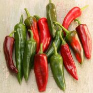 Hot Pepper Big Jim Appx 100 Seeds